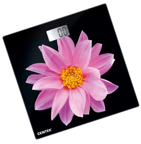 CENTEK CT-2416 Pink Flower